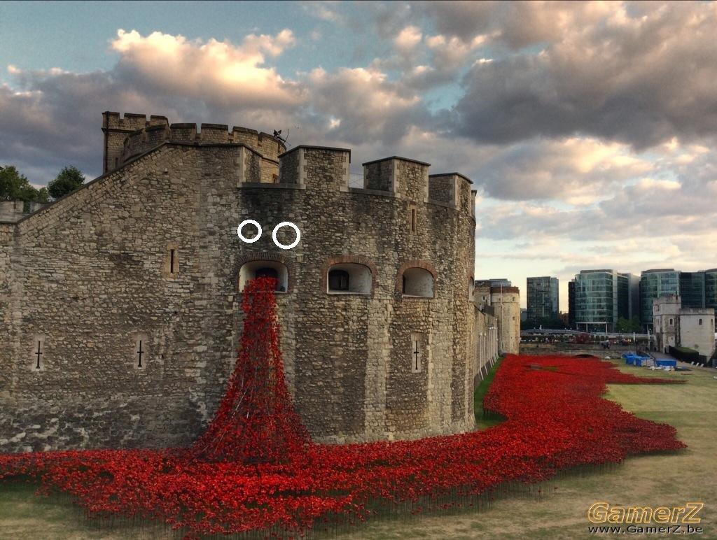 poppies-wwii-wcht01.jpg