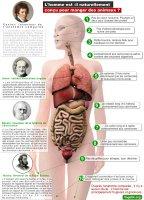 anatomie comparee.jpg