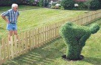 funny-garden.jpg